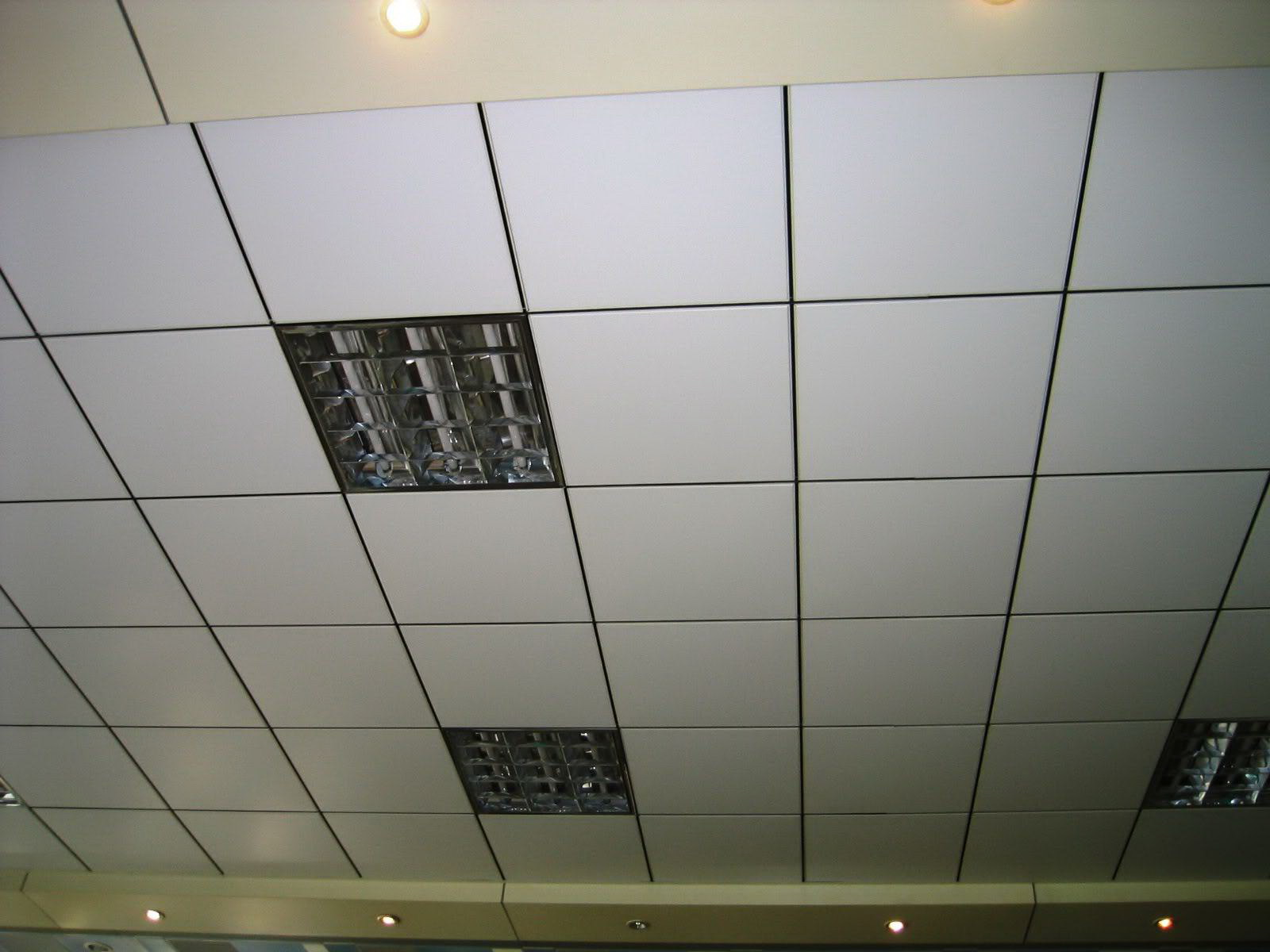 Ceiling Tee Bar Installation of grille lamp